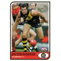 2005 Tradition - Common Team Set - Richmond Tigers (10)