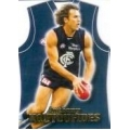 2006 Champions - Guernsey Die Cut Team Set - Carlton Blues (5)