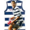 2006 Champions - Guernsey Die Cut Team Set - Geelong Cats (5)