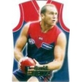 2006 Champions - Guernsey Die Cut Team Set - Melbourne Demons (5)