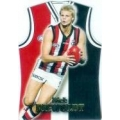 2006 Champions - Guernsey Die Cut Team Set - St.Kilda Saints (5)