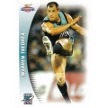 2006 Champions - Common Team Set - Port Adelaide Power (10)