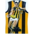 2006 Supreme - Guernsey Die Cut Team Set - Hawthorn Hawks (6)