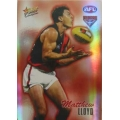 2007 Champions - Holographic Foil Team Set - Essendon Bombers (12)