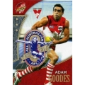 2007 Supreme - Adam GOODES (Sydney)