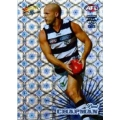 2008 Champions - Holographic Foil Team Set - Geelong Cats (12)