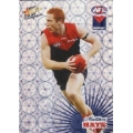 2008 Champions - Holographic Foil Team Set - Melbourne Demons (12)