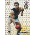 2008 Champions - Holographic Foil Team Set - Richmond Tigers (12)