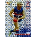 2008 Champions - Holographic Foil Team Set - Western Bulldogs (12)