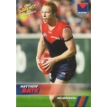 2008 Champions - Common Team Set - Melbourne Demons (12)