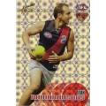 2008 Classic - Holographic Foil Team Set - Essendon Bombers (12)