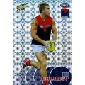 2008 Classic - Holographic Foil Team Set - Melbourne Demons (12)
