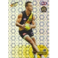 2008 Classic - Holographic Foil Team Set - Richmond Tigers (12)