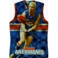 2009 Champions - Holographic Guernsey Team Set - Western Bulldogs (11)