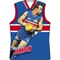 2010 Champions - Holographic Guernsey Team Set - Western Bulldogs (11)