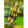 2010 Champions - Common Team Set - Hawthorn Hawks (11)