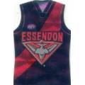 2010 Prestige - Holographic Guernsey Team Set - Essendon Bombers (12)