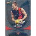 2011 Champions - Silver Parallel Team Set - Essendon Bombers (11)