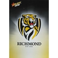 2012 Champions - Common Team Set - Richmond Tigers (12)