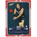 2012 Champions - DIY Laser Stickers - Silver - Fremantle Dockers (12)