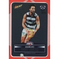 2012 Champions - DIY Laser Stickers - Silver - Geelong Cats (12)