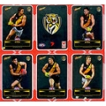 2012 Champions - DIY Laser Stickers - Silver - Richmond Tigers (12)