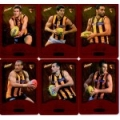 2014 Champions - Gold Foil Parallel Team Set - Hawthorn Hawks (12)