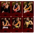 2014 Champions - Gold Foil Parallel Team Set - Richmond Tigers (12)