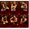 2014 Champions - Gold Foil Parallel Team Set - Essendon Bombers (12)