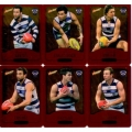 2014 Champions - Gold Foil Parallel Team Set - Geelong Cats (12)