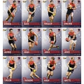 2014 Champions - Common Team Set - Melbourne Demons (12)