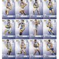 2014 Champions - Common Team Set - North Melbourne Kangaroos (12)
