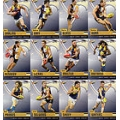 2014 Champions - Common Team Set - Sydney Swans (12)