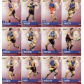 2014 Champions - Common Team Set - Brisbane Lions (12)