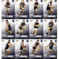 2014 Champions - Common Team Set - Carlton Blues (12)