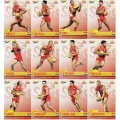 2014 Champions - Common Team Set - Gold Coast Suns (12)