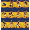 2014 Honours - Common Team Set - Adelaide Crows (12)